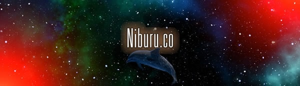 Categorie Niburu.co