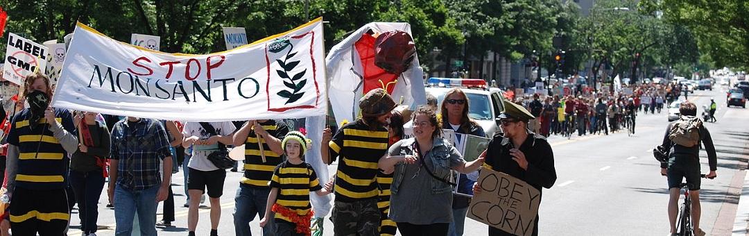 Het is voorbij voor Monsanto. Wordt Dewayne Johnson de David die Goliath velt?