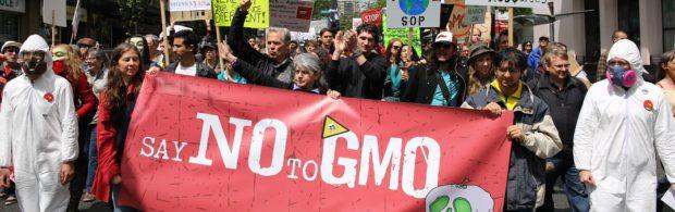 Een man heeft een patent dat Monsanto kan vernietigen en de wereld voor altijd kan veranderen. Kijk dit filmpje