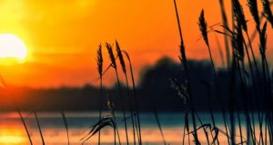 Zeer merkwaardige zonsondergang leidt tot theorieën over aliens. Bekijk de foto's