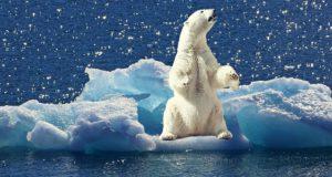 Sociaal-psychologe hekelt onafgebroken indoctrinatie door MSM over klimaat. Waarom berichten ze hier niet of nauwelijks over?