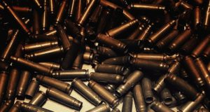 the shells 2350388 1280