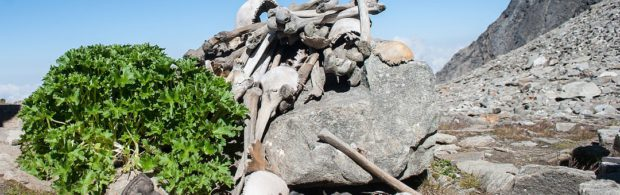 Mysterie rond 'Skelettenmeer' wordt alleen maar groter. Wat is er met al deze mensen gebeurd?