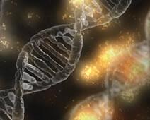 genen anti-veroudering