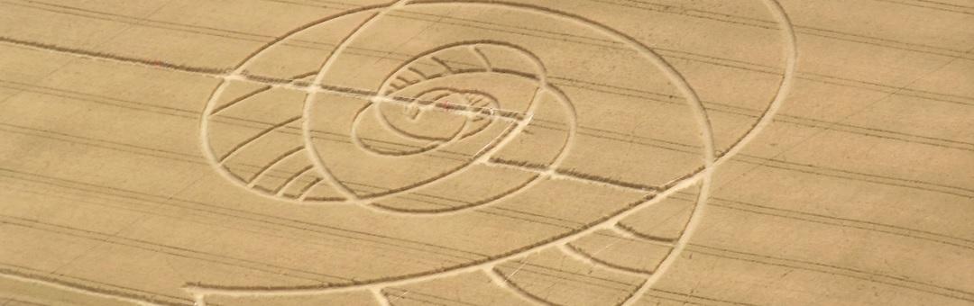 Worden alle graancirkels door mensen gemaakt? Deze doorgewinterde onderzoeker beweert van niet (hoe ontstaan ze dan?)